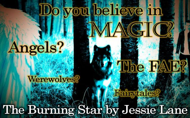 Star Series Wolf Banner 5