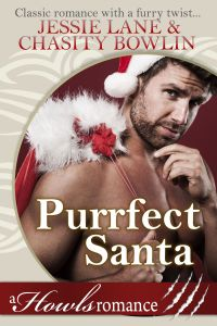 Purrfect Santa with CB